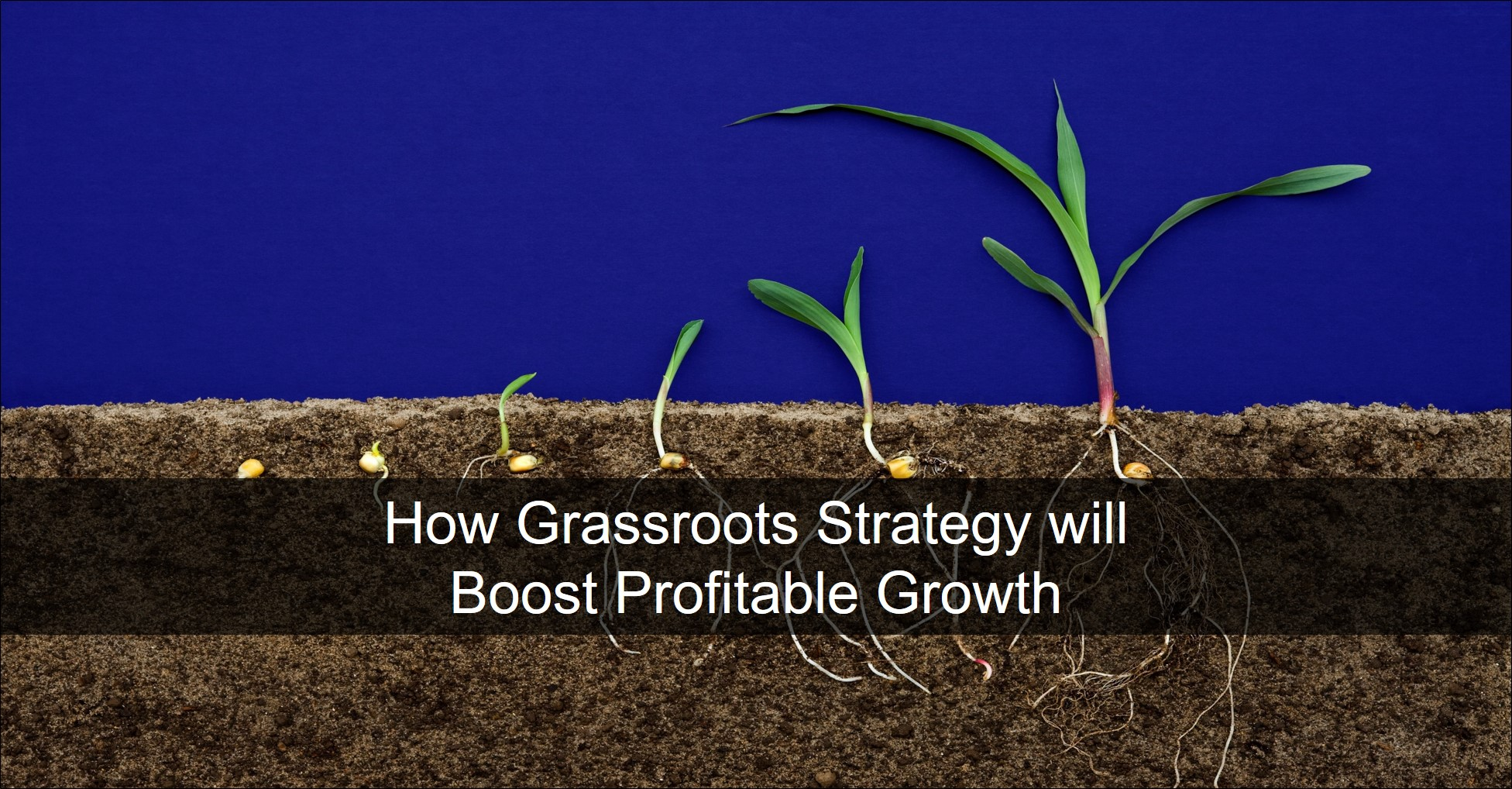 Blog 20190925 - Grassroots Strategy