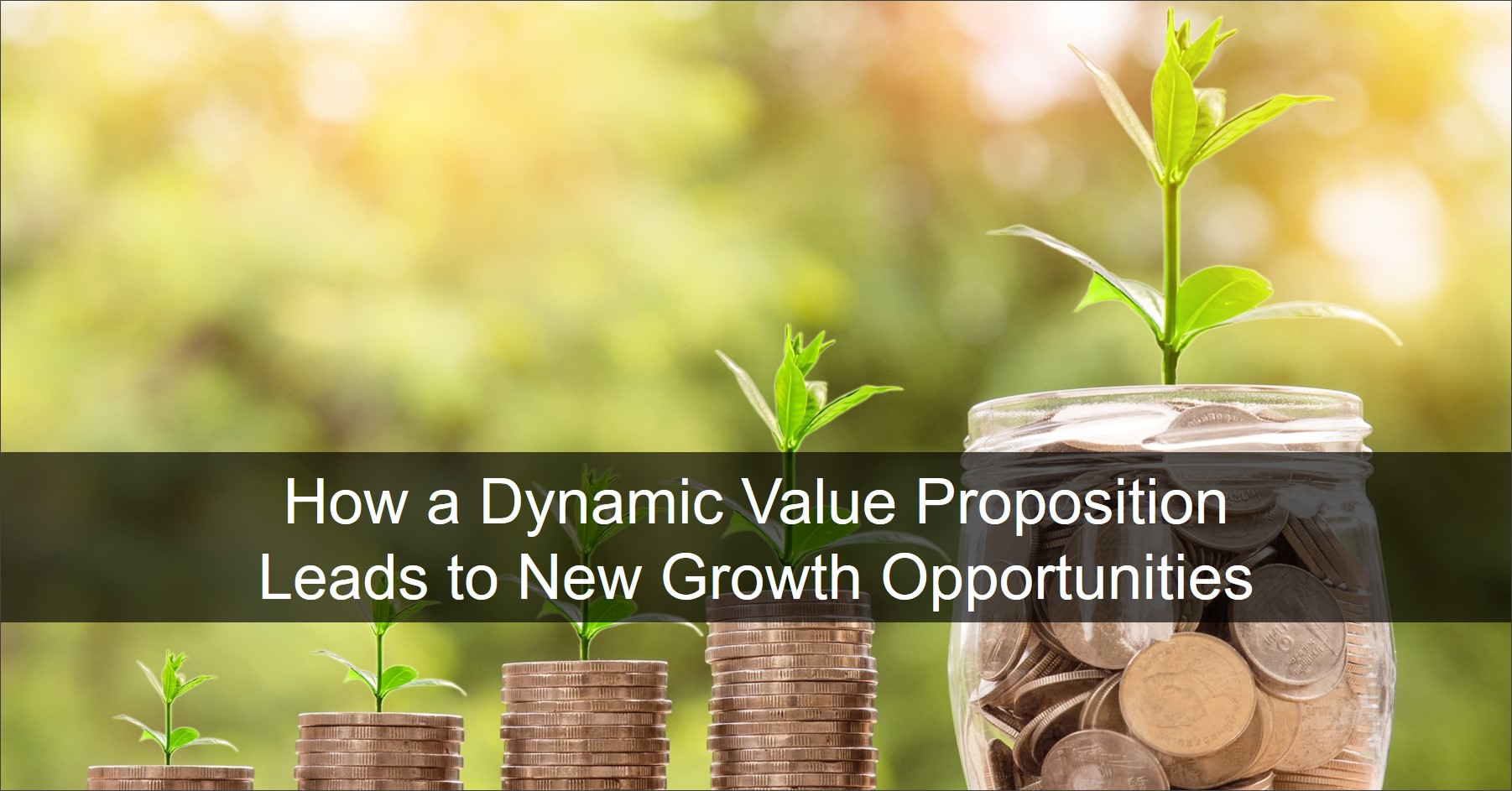 Value propositions provide a value map at the market segment, company and individual role level